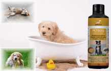 Dog shampoo against itching