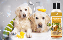 Dog shampoo for dry skin