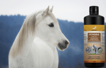Shampoo for white horses