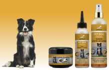 Dog care as a saving price set