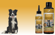 peticare SET  - Dermatitis and itching in the dog
